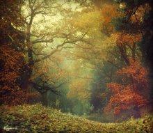 Herbst / ......