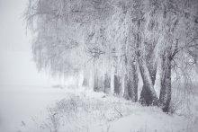 Der Winter ist in der Nähe von Minsk