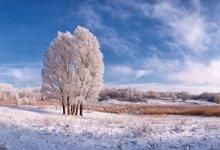 Eine einfache Skizze Winter