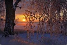 Frosty Morgen ...